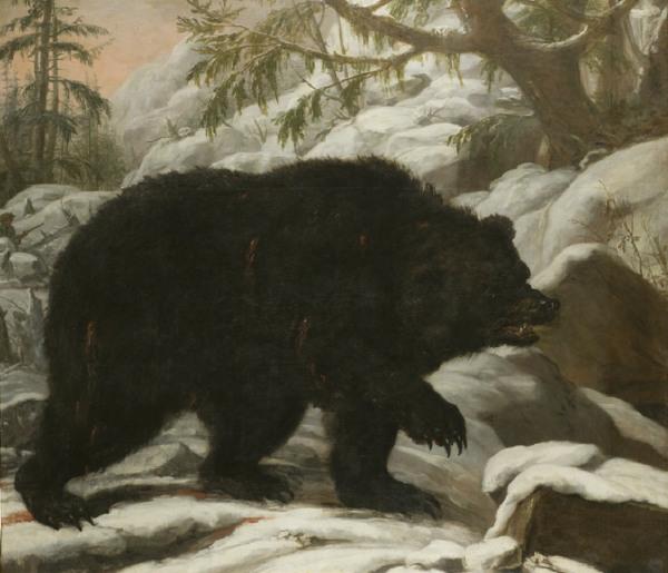 Målning föreställande en skadeskjuten björn